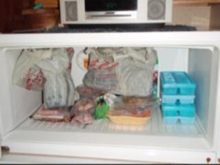 Using a Kitchen Freezer to kill Didymo
