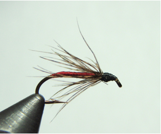Wet fly tied with a partridge feather